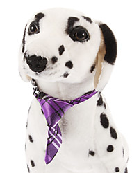 Dog Tie Purple Spring/Fall Wedding