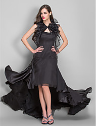 Formal Evening / Military Ball Dress - Plus Size / Petite A-line Spaghetti Straps Asymmetrical Chiffon / Organza