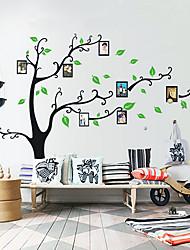 Photo Stickers muraux, arbre botanique Oiseaux famille