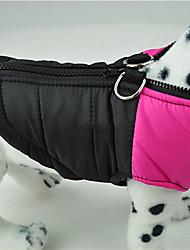 Dog Coat Green / Blue / Pink Winter ClassicDoglemi, Dog Clothes / Dog Clothing