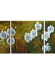 Mano óleo pintada pintura botánica Flores blancas con extendía Frame Set de 2