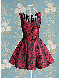 TS-Vintage Rose Jacquard Robe trapèze