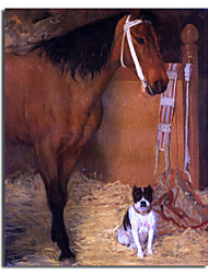 Hand Painted Oil Painting Animal Horse And Dogs with Stretched Frame Ready to Hang