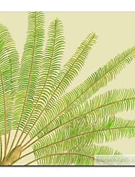 Main à l'huile peinte peinture florale Feuille de palmier avec cadre étiré