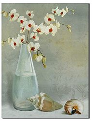 Hand Painted Oil Painting Still Life Vase And The Snail with Stretched Frame