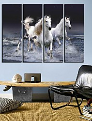 Stretched Canvas Art Animal A Pentium Horse Set of 4