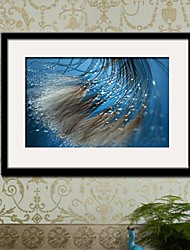 The Water Swaying  Framed Canvas Print