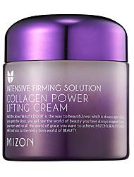 [MIZON] Colágeno poder de elevação Creme 75ml (Wrinkle Care, hidratação da pele e rejuvenescimento)