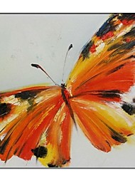Hand Painted Canvas Painting Butterfly with Stretched Frame Ready to Hang