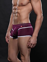 Men's Sexy   Purple  Underwear