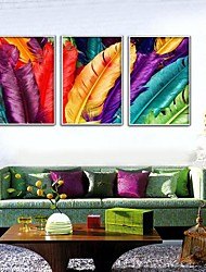 Colored Feathers Framed Canvas Print Set of  3