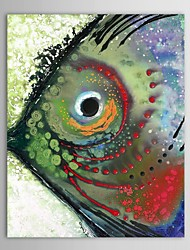 Hand Painted Oil Painting Animal Tropical Fish with Stretched Frame