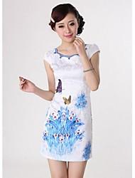 Donna collare sintesi Paragrafo vestito cinese