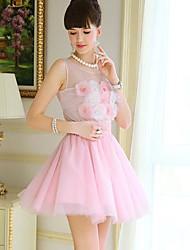 Pink Doll Mesh A-Line Minifalda