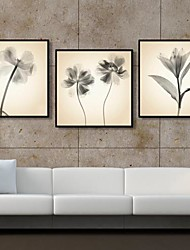 The Flowers Decorative Framed Canvas Print Set of 3
