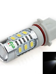 P13W 16W 12x 5630 SMD 2 x CREE XP-E LED 1500lm 6500K White Light LED FORCAR Foglight / Phare (DC12 ~ 24V)
