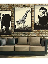 Animal Decorative Painting Framed Canvas Print Set of 3