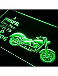 j041 Biker Lives here with his old Hog Neon Sign