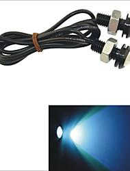 Faros Antiniebla/Luz para el Día/Luz Para La Placa del Coche Luz Dirigida ) - LED