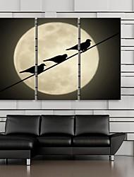 Keilrahmen bist der Silhouette der Vögel im Mondlicht Satz von 3