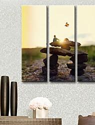 tela arte della pietra della vita set di 3