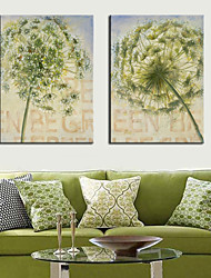 Stretched Canvas Art Flower Beautiful Dandelion Set of 2