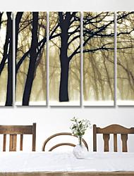 Reproducción en lienzo de la Memoria de Arte de El Bosque Paisaje juego de 5