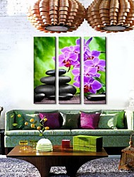 Personalized Canvas Prin Stones And Flowers 24x70cm  30x90cm  33x100cm  Framed Canvas Painting Set of 3