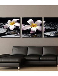 Personalized Canvas Print The Flower Of The Pebbles 30x30cm  40x40cm  60x60cm  Framed Canvas Painting Set of 3