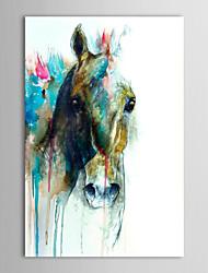 Handgemaltes Ölgemälde Tier Abstrakt Pferdekopf mit gestreckten Rahmen fertig zum Aufhängen