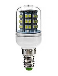 Ampoule Maïs Décorative Blanc Froid Juxiang Encastrée Moderne E14 3 W 48 SMD 3528 180 LM 6000-6500 K AC 100-240 V