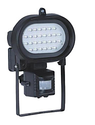 Free  Shipping Voltage 220-240V  and 90lumens LED Flood Light Lamps