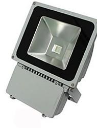 imperméable à l'eau IP65 pse CE 70w LED RGB AC85-265V Projecteur