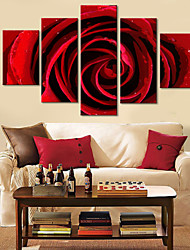 Rose Canvas Arte Floral Red Conjunto de 5