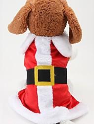 Perros Abrigos Rojo Invierno Navidad Navidad