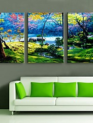 Personalized Canvas Print The Color Of The Forest 35x50cm  40x60cm  50x70cm  Framed Canvas Painting Set of 3