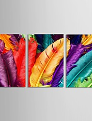 Still Life Modern Traditional,Three Panels Horizontal Print Wall Decor For Home Decoration