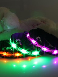 Cat / Dog Collar LED Lights / Cartoon Design Red / White / Green / Blue / Pink / Yellow / Orange Nylon