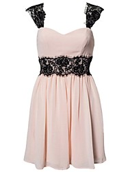 Women's Radiant Lace Embellished Skater Dress