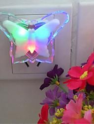 papillon prise lumière de nuit