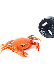 RC Crab Animal Toys for Kids Remote Control Toys