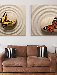 E-HOME® Stretched Canvas Art Stone On The Butterfly Decorative Painting Set of 2