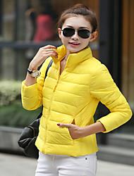 Women's Multi Colour Light Down Jacket without Hat