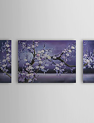 Oil Painting Floral Blossom Plum Flowers with Stretched Frame Set of 3 1307-FL0165 Hand-Painted Canvas