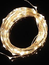 10m 9.6w 100-led warm wit licht kerst flash strip licht lamp (DC 12V)