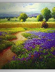 """Dipinti a mano olio pittura di paesaggio 24 """"x 24"""" Piazza"""