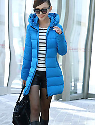 nova algodão coreano magro print floral jaqueta de Zebro mulheres