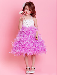 Ballet Kids' Dancewear Tutu Ballet Lively Plumed Dance&Party Dress(More Colors) Kids Dance Costumes