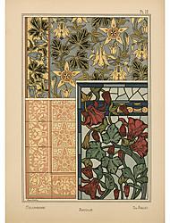 aquilegia flores persiana patrón