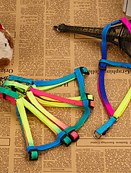 Dog Harness Green Nylon